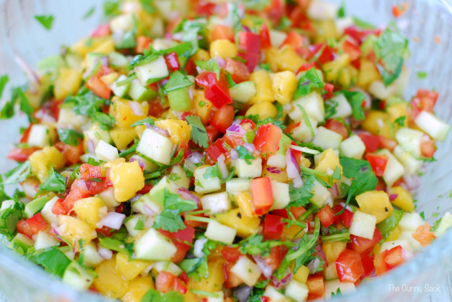HCG Diet Recipes for Salsa